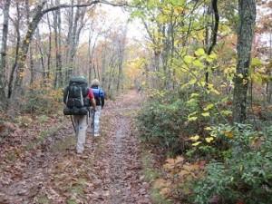 wandelen met backback door bos