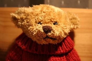 spycam in teddybeer